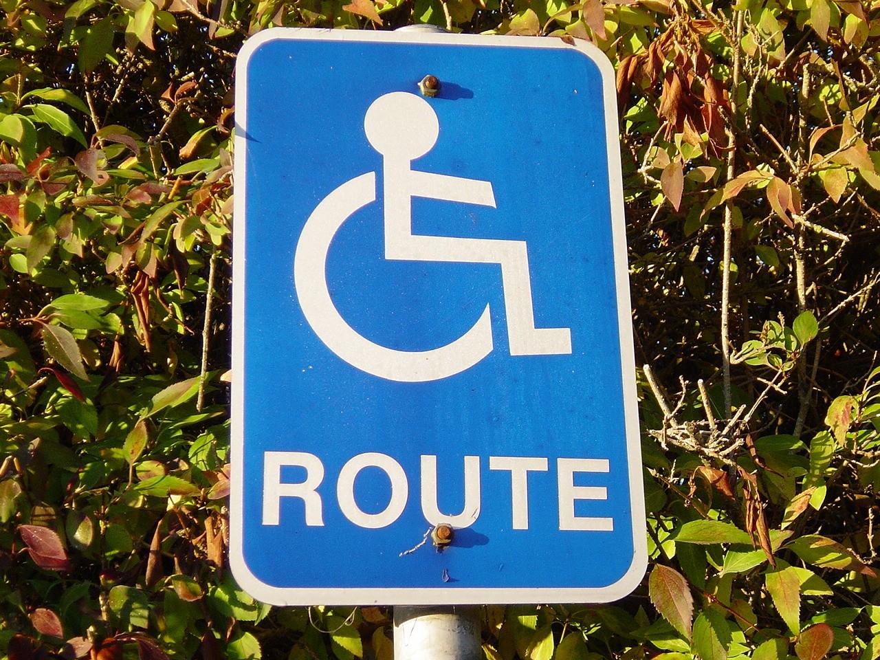 Niepełnosprawność – wprowadzenie, cz. 3